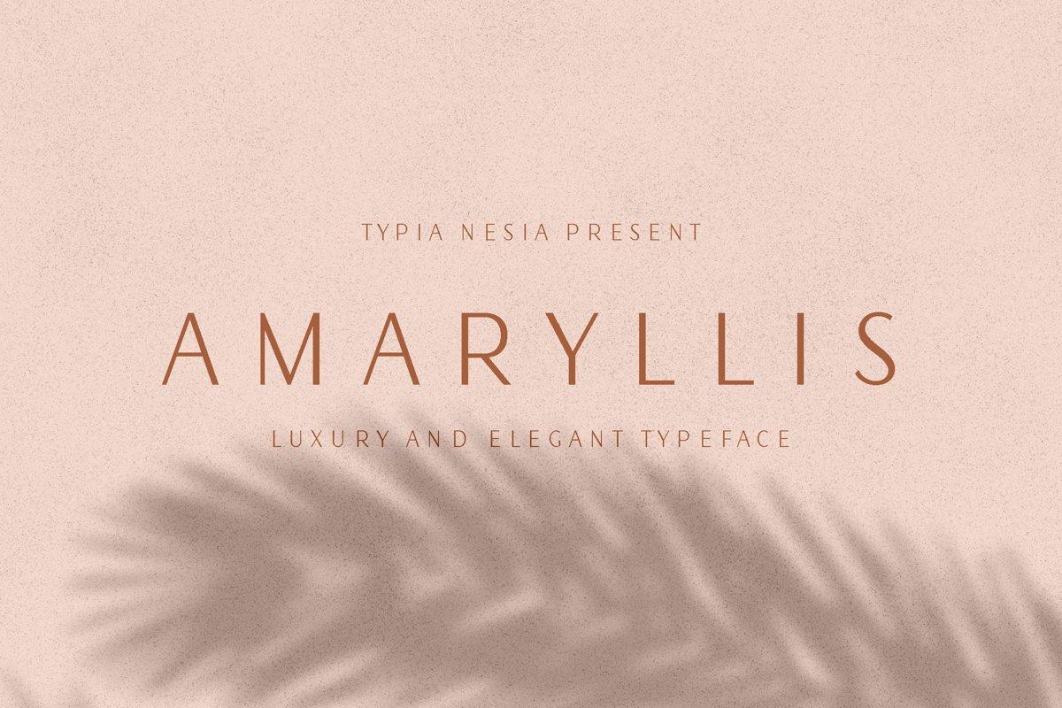 Amaryllis Sans example image 1