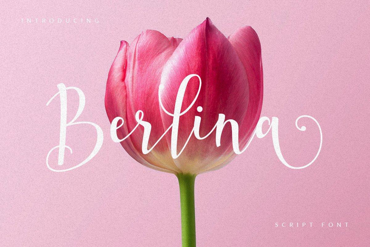 Berlina Script example image 1