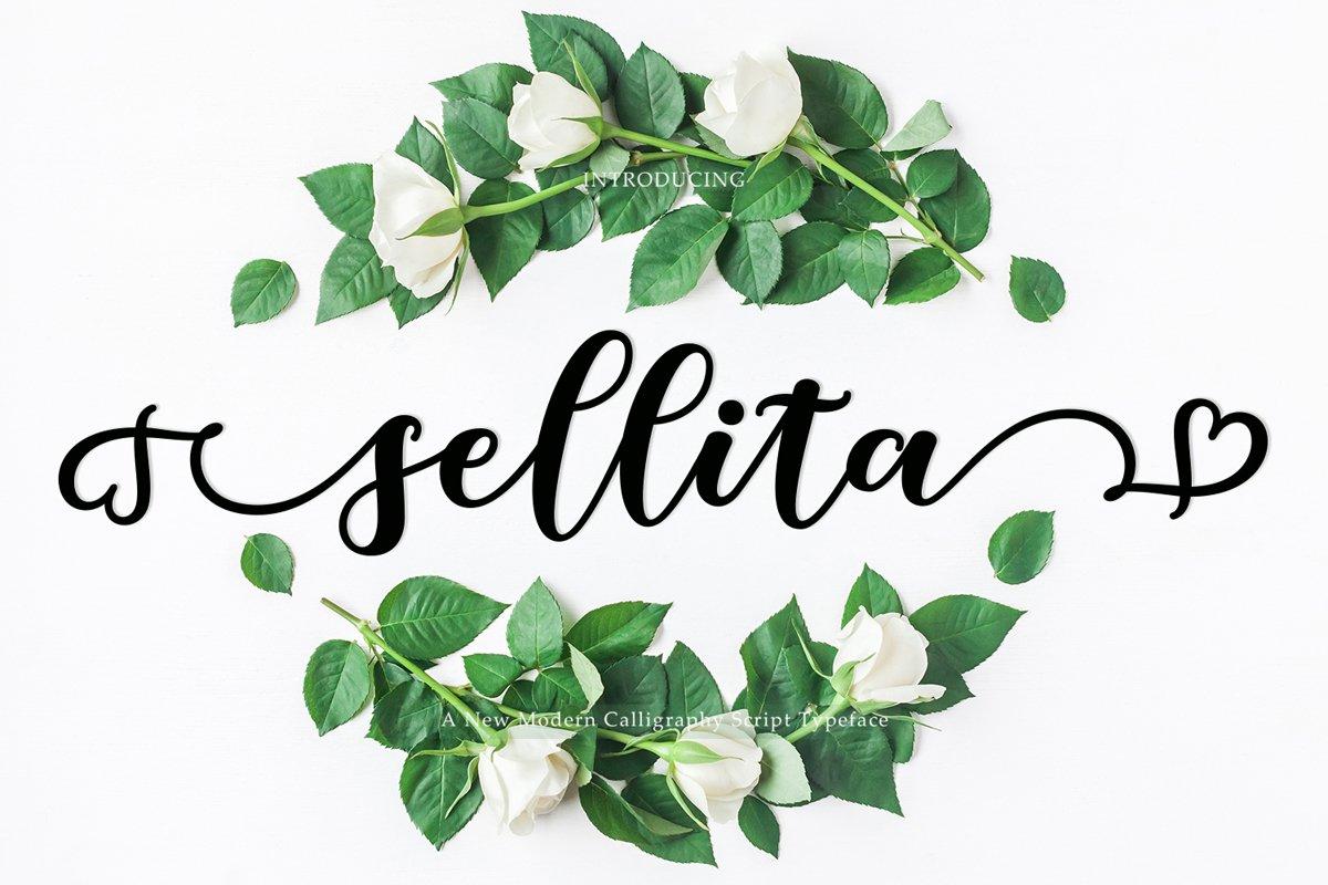Beautiful New Sellita Script font example image 1