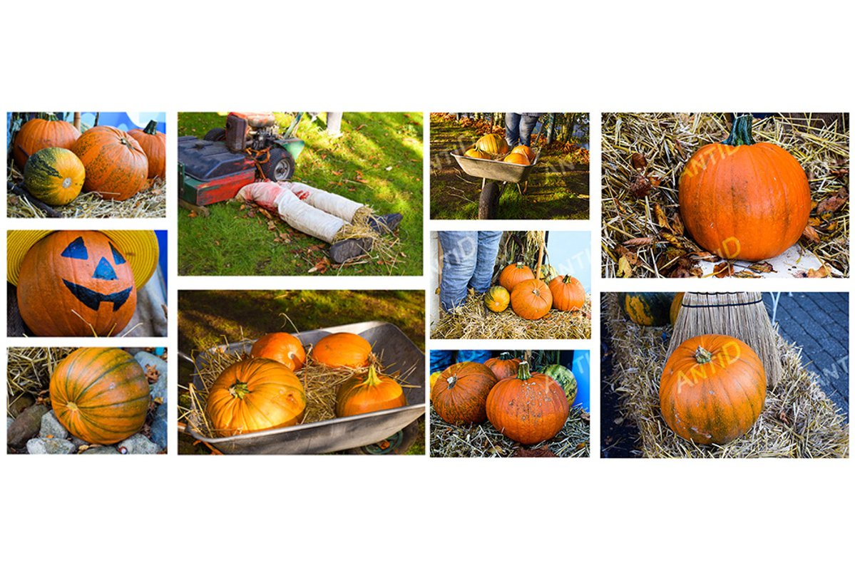 Set of 10 images. Festive composition for Halloween. example image 1