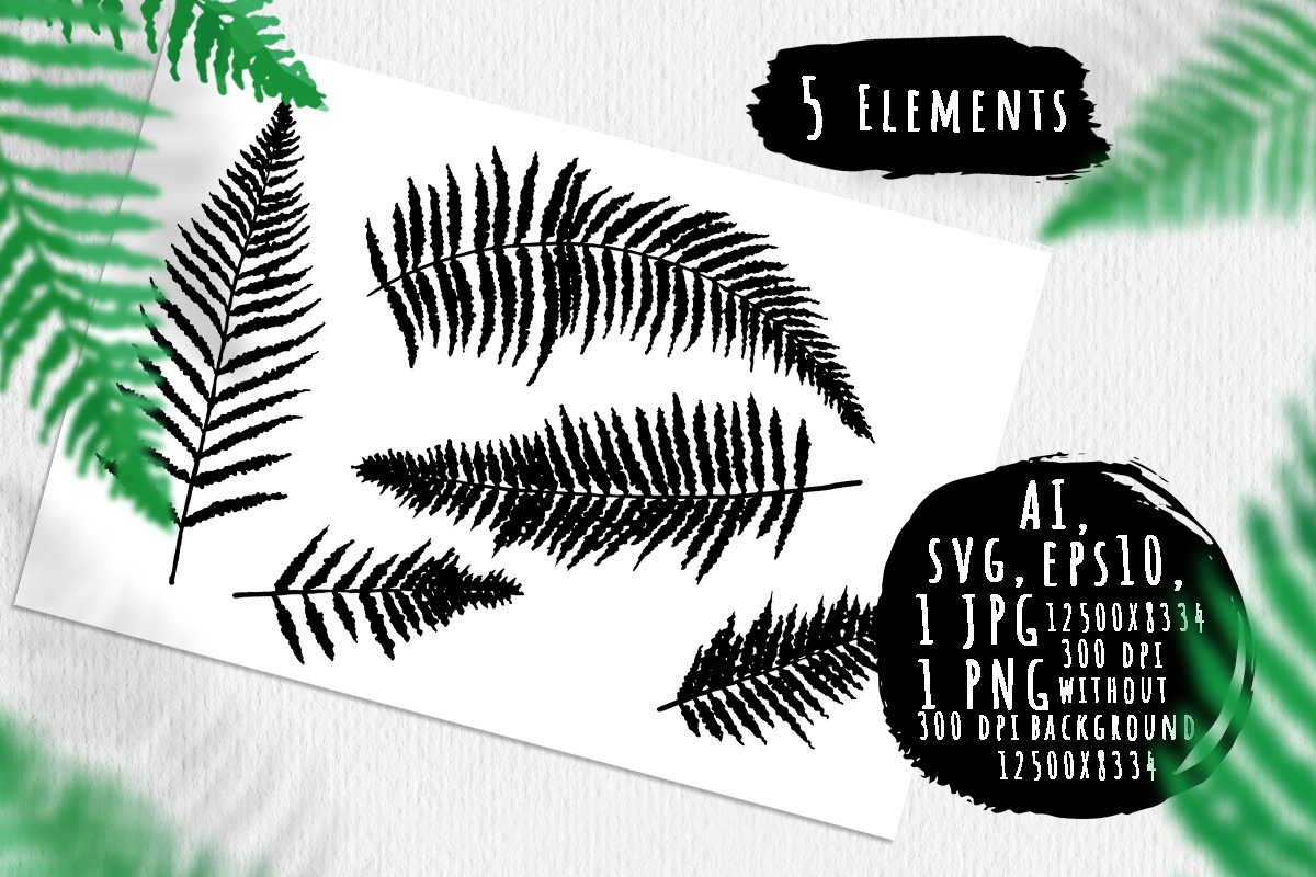 Fern leaves silhouettes bundle example image 1