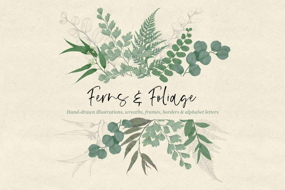 Ferns & Foliage example image 1
