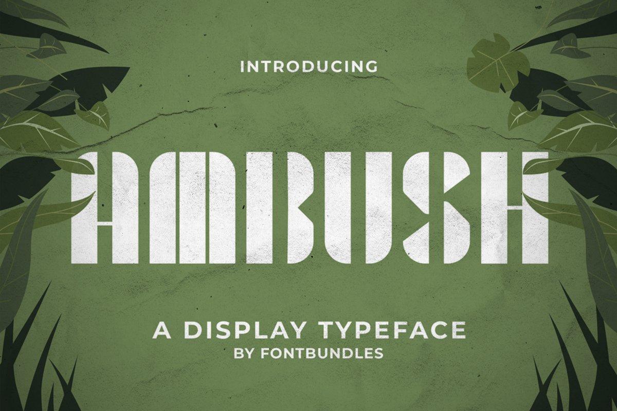 Ambush example image 1