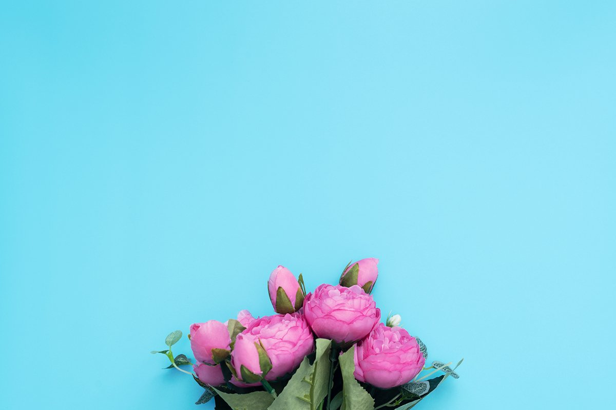 Pink flowers on blue background. example image 1