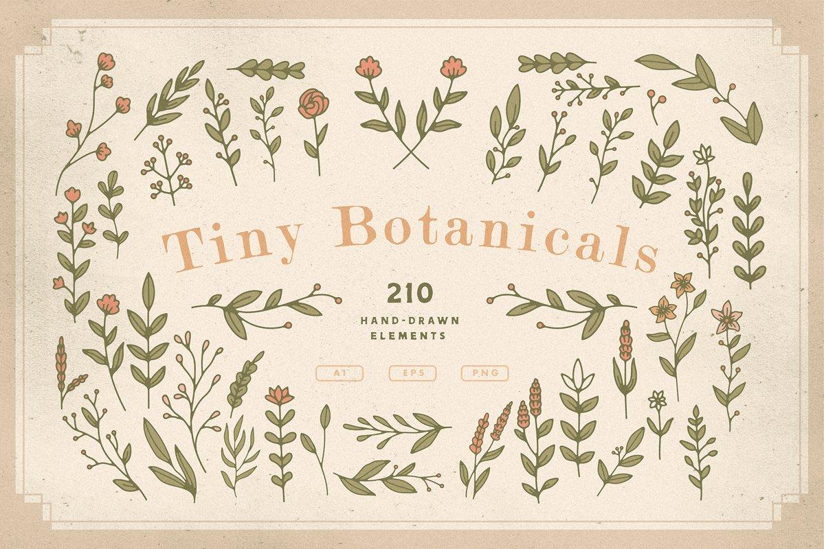 Tiny Botanicals | Wild Flowers Pack example image 1