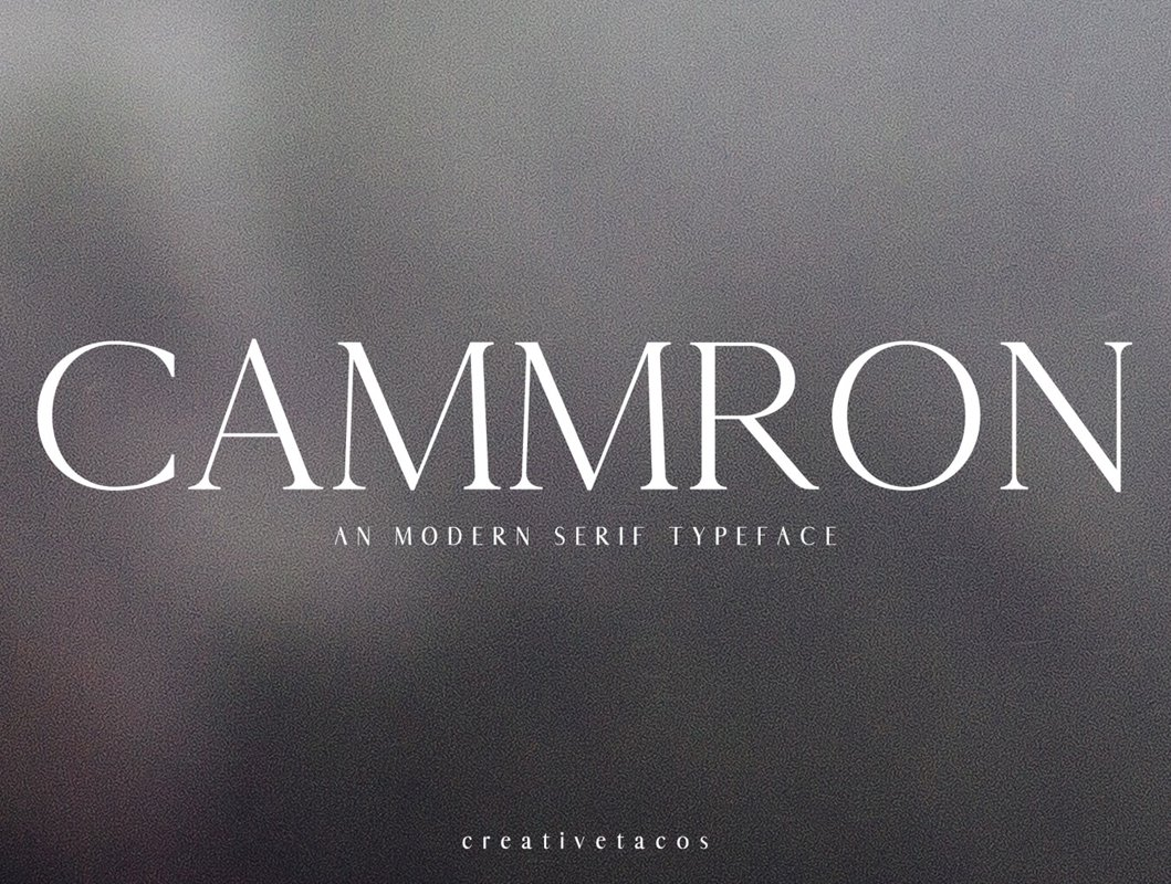 Cammron Serif Font Family example image 1