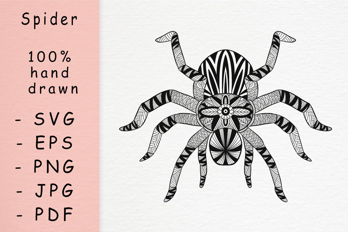 Hand drawn Spider with patterns example image 1