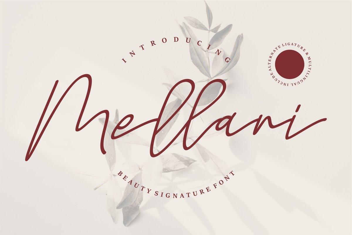 Mellani - Beauty Signature Font example image 1