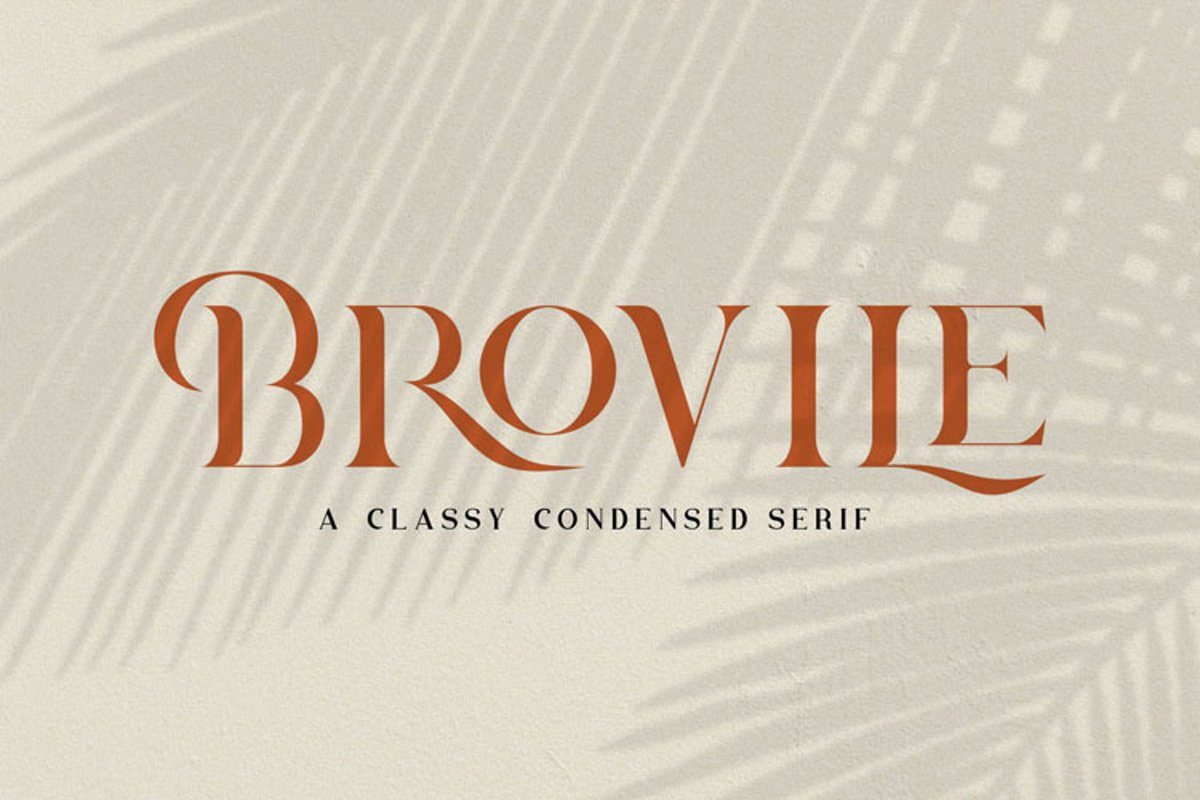 Brovile. A Classy Serif example image 1