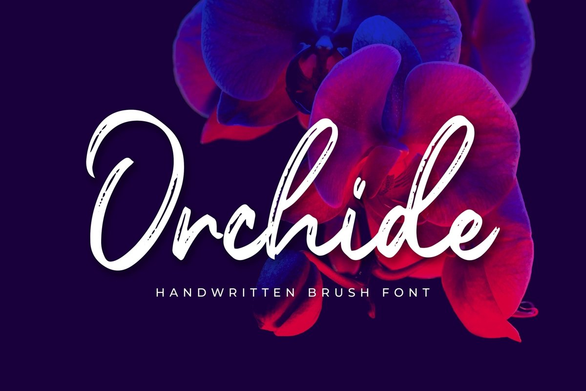 Orchide example image 1