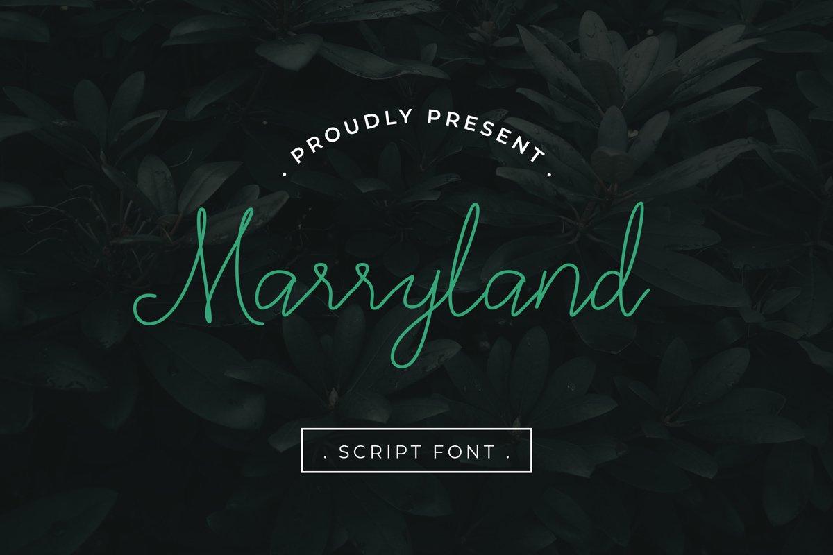 Marryland Handwritten Script Monoline example image 1