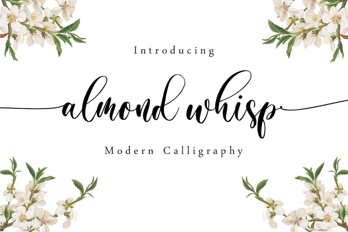 Almond Whisp - Modern Calligraphy example image 1