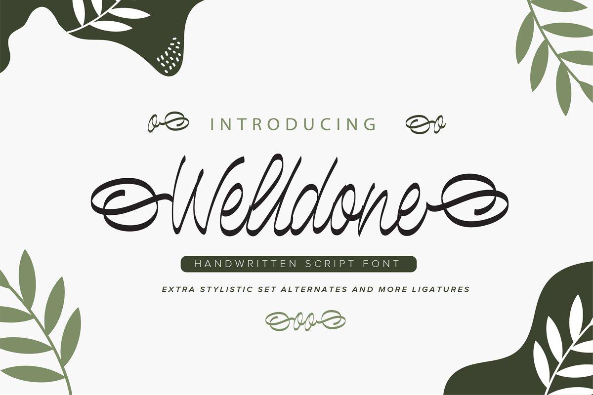 Welldone | Handwritten Script Font example image 1