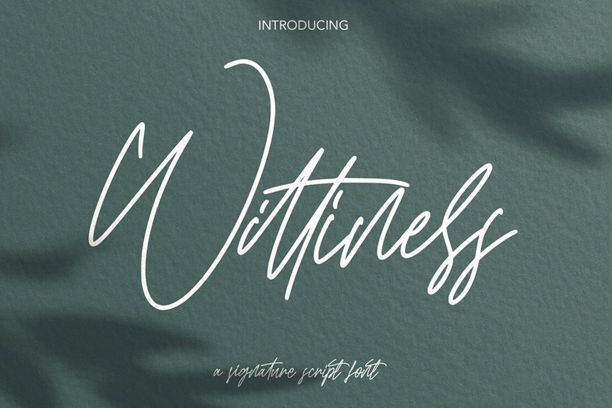 Wittiness - Signature Script Font example image 1