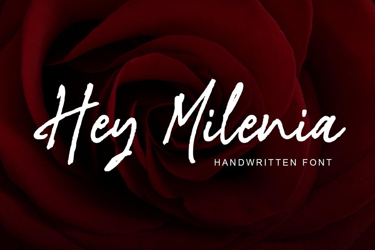 Hey Milenia example image 1