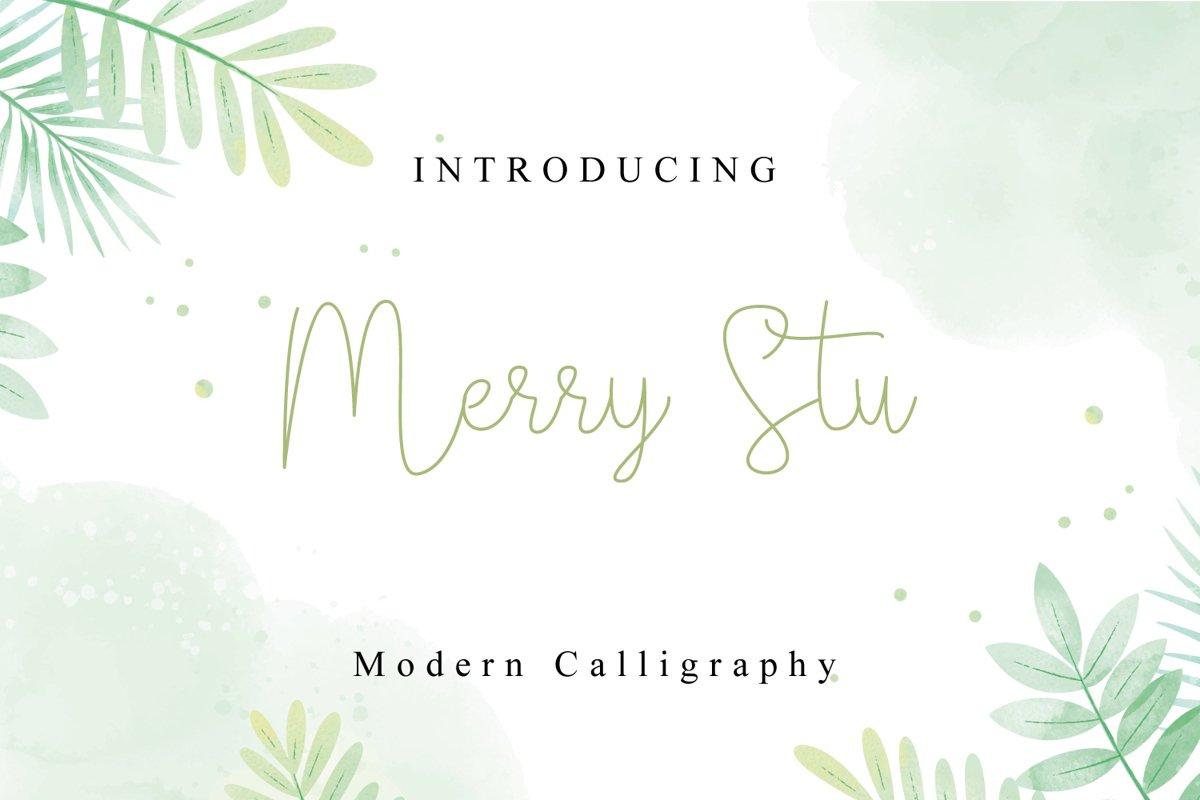 Merry Stu example image 1