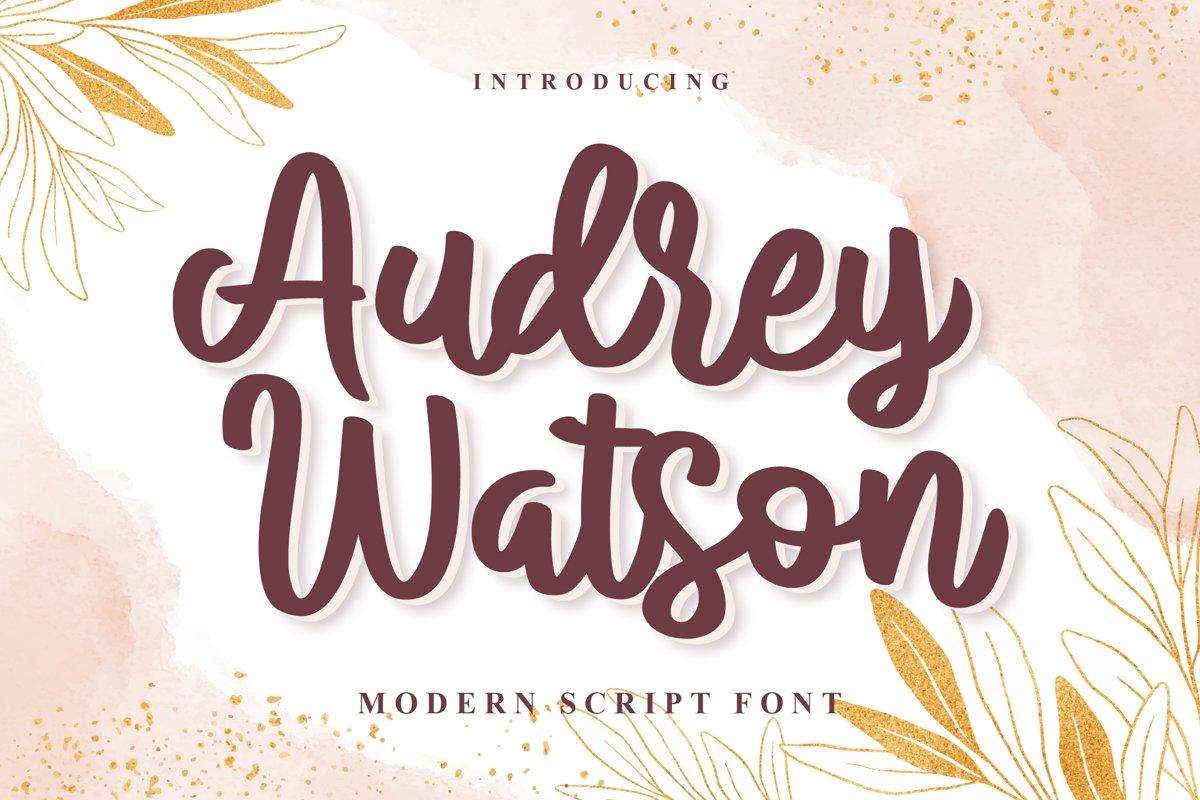 Audrey Watson - Modern Script Font example image 1