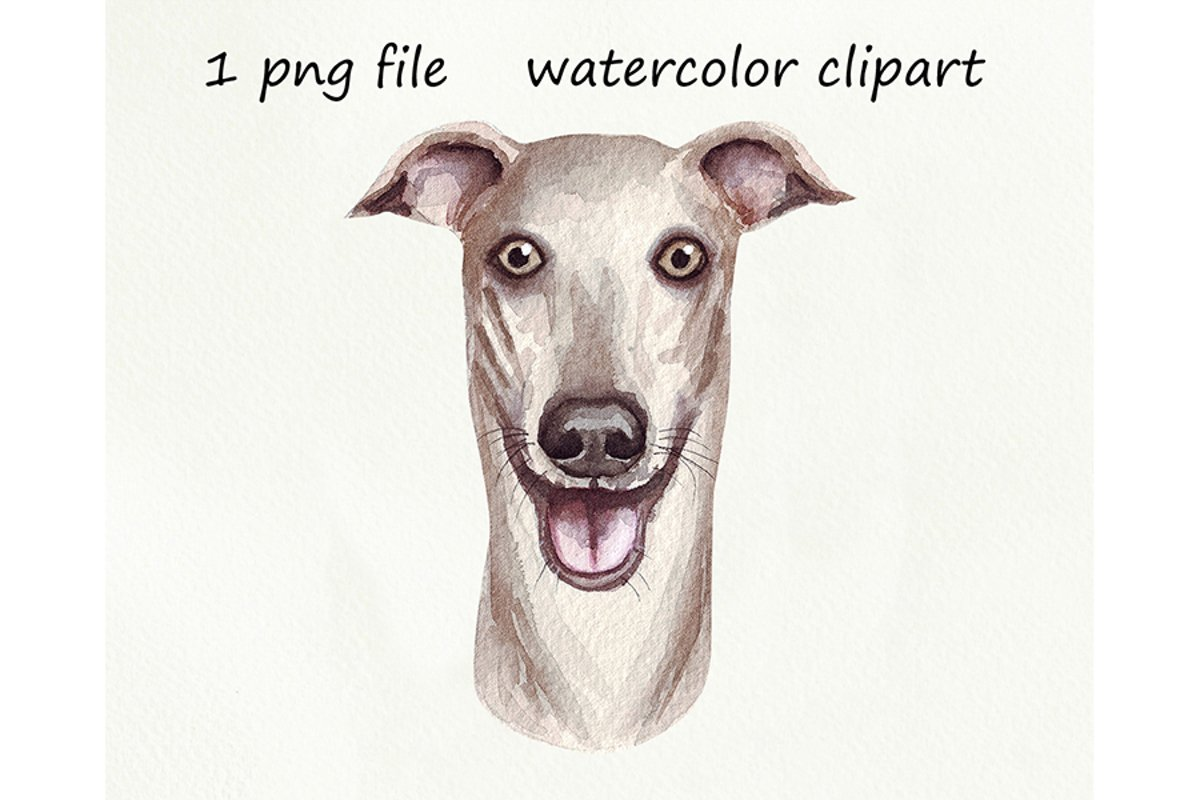 Watercolor dog png, Dog Greyhound, hand drawn example image 1