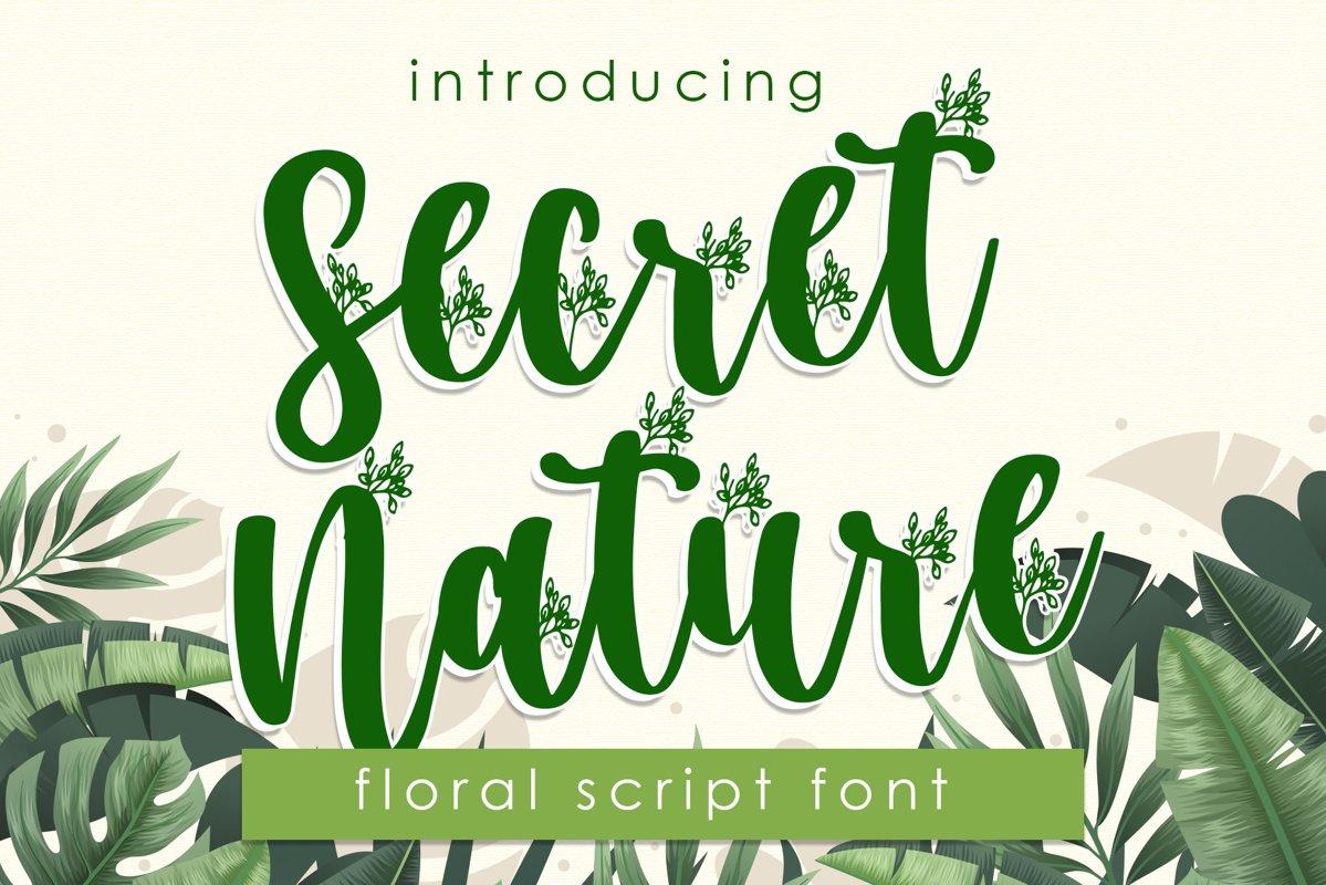 Secret Nature - Floral Script Font example image 1