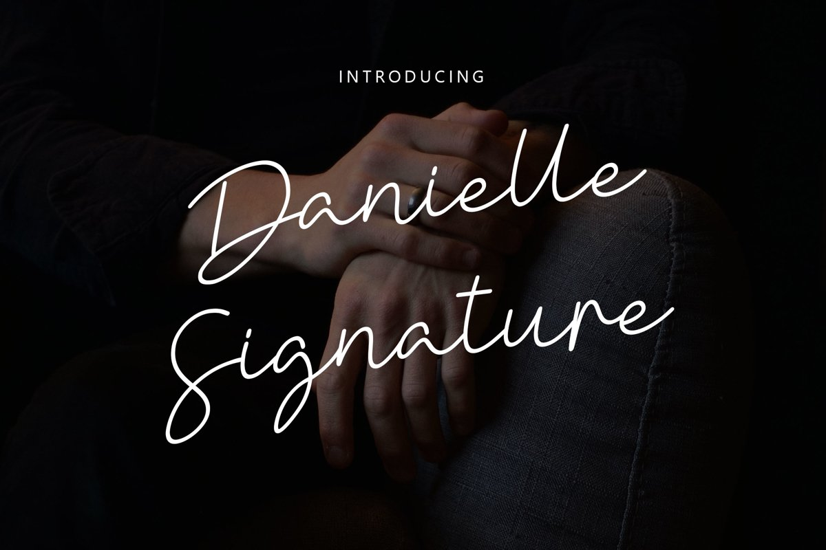Danielle Signature - Handwritten Font example image 1