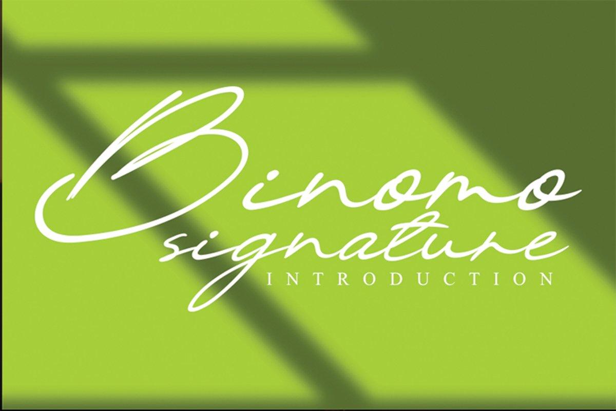 Binomo signature example image 1