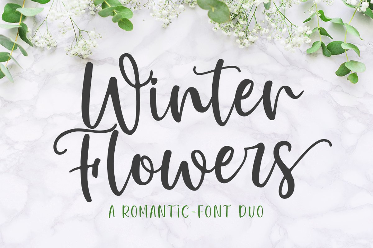 Winter Flowers - Font Duo example image 1