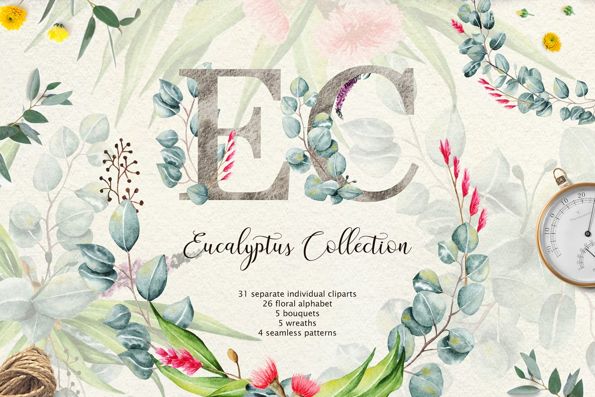 Eucalyptus CollectionLetter example image 1