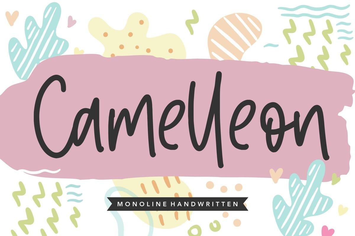 Camelleon Monoline Handwritten Font example image 1