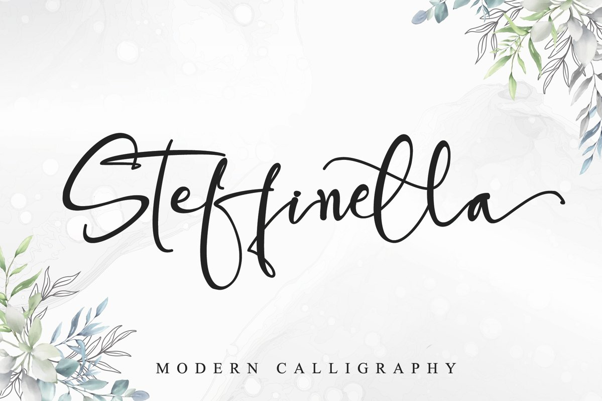 Steffinella example image 1