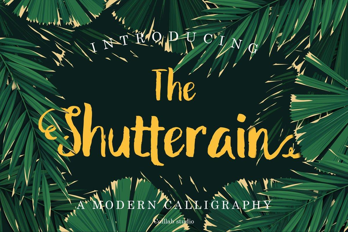 The Shutterain - A Modern Handwritten Font example image 1