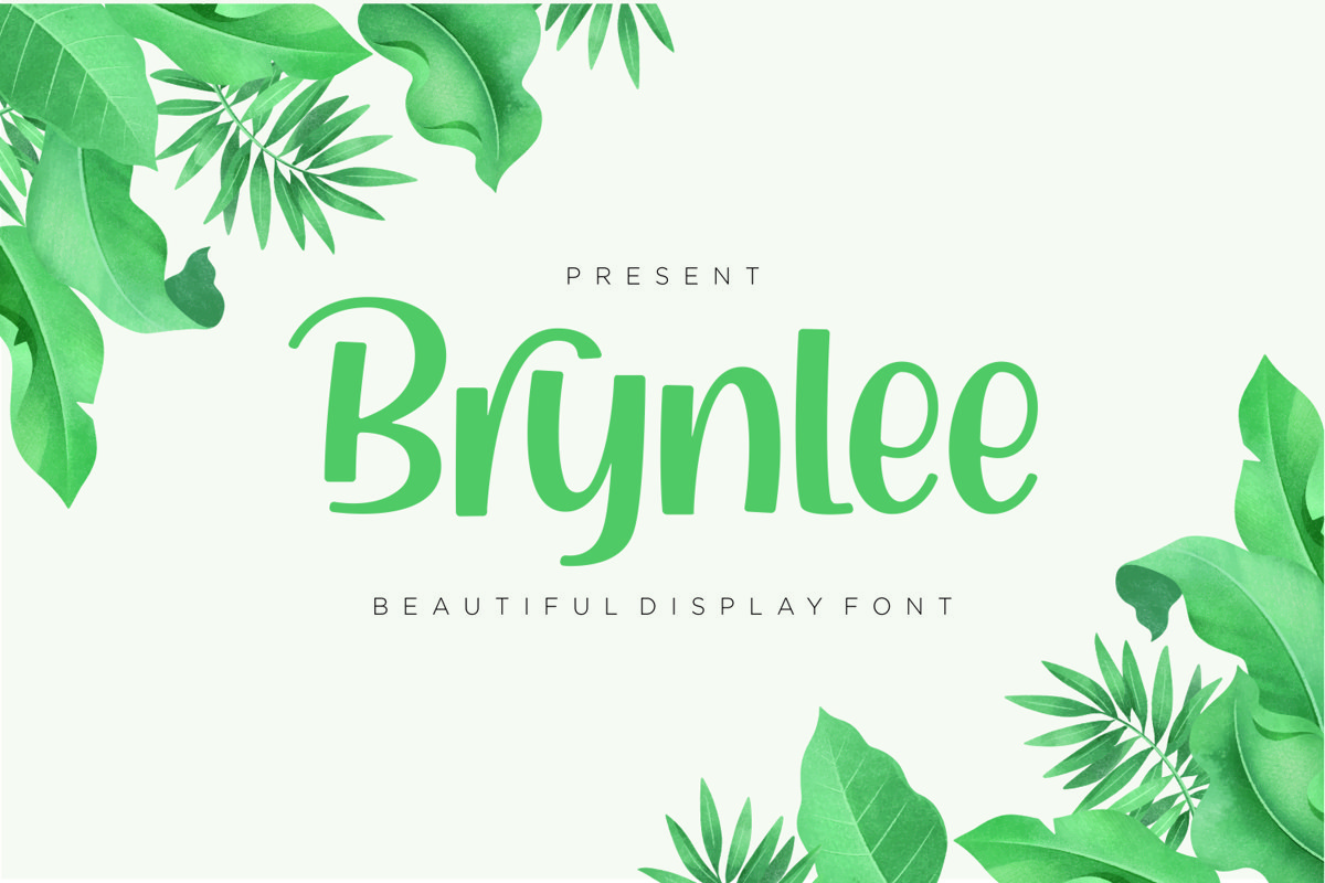 Brynlee - Beautiful Display Font example image 1