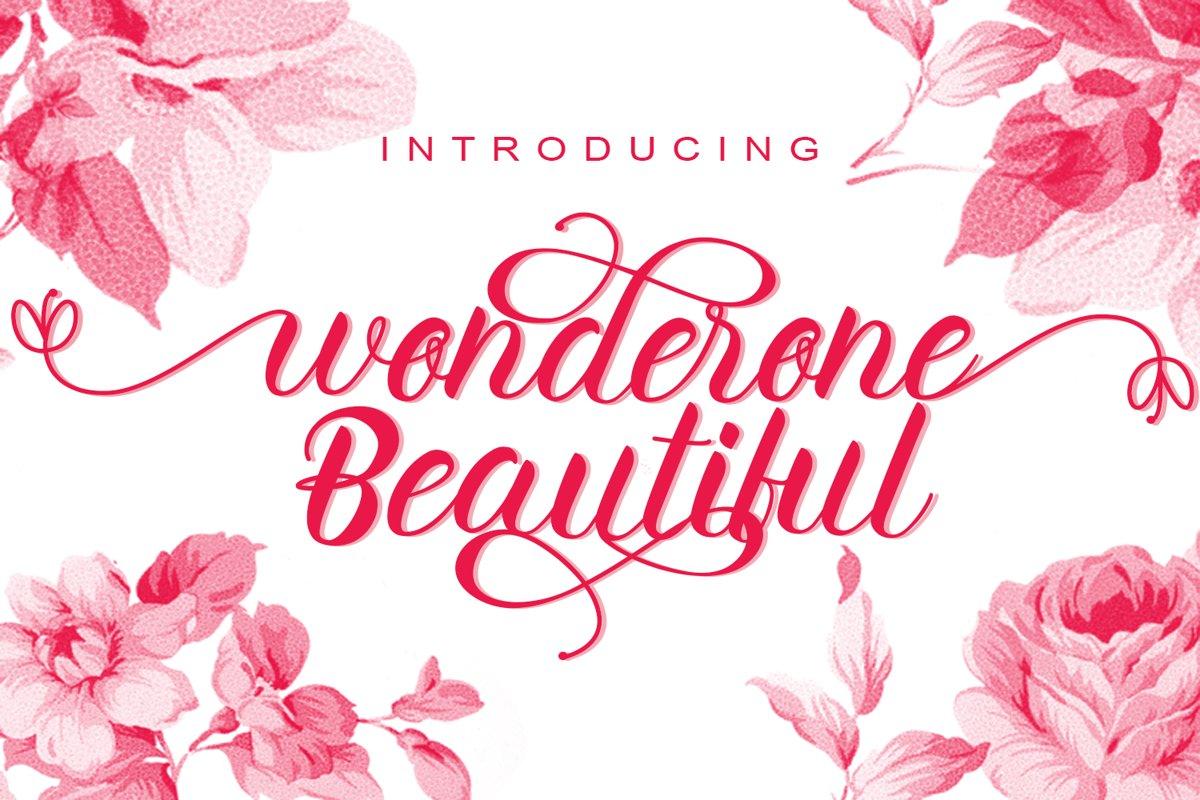 wonderone beautiful example image 1