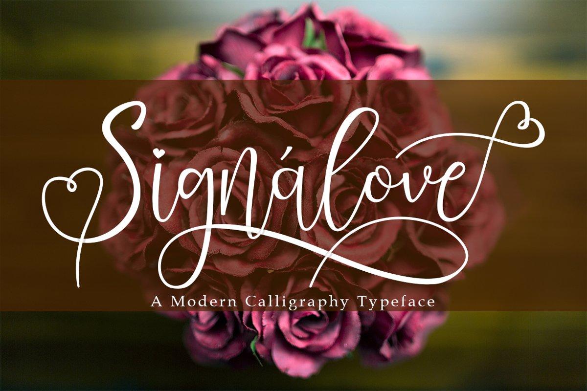 Signalove | Modern Calligraphy Typeface example image 1