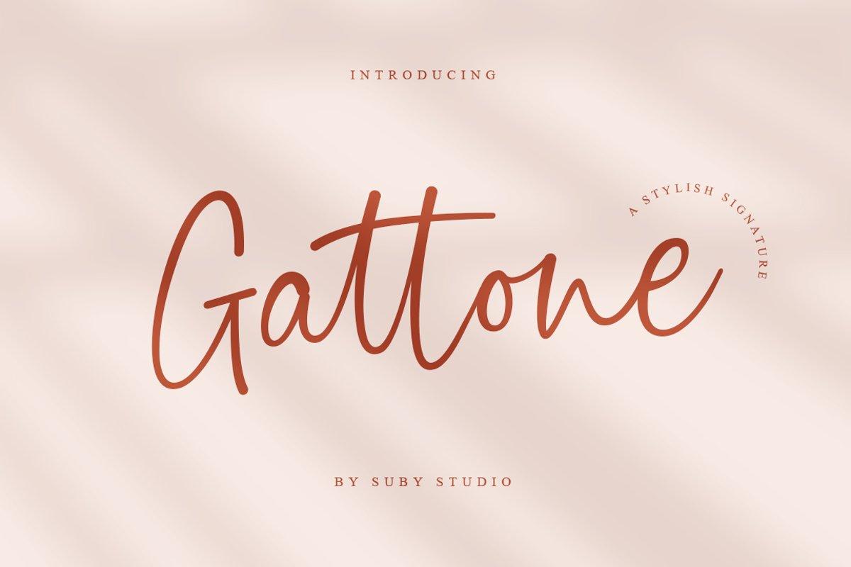 Gattone Signature example image 1
