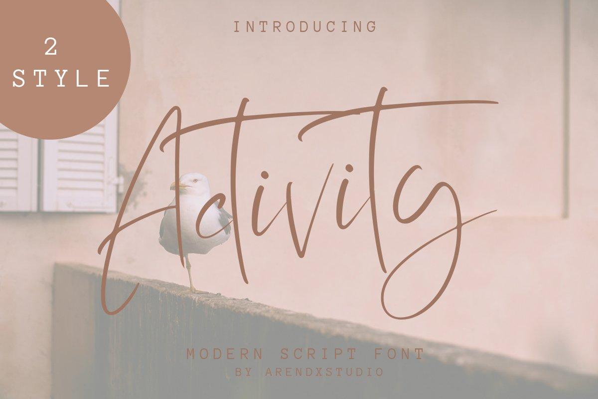 Activity Modern Script Font example image 1