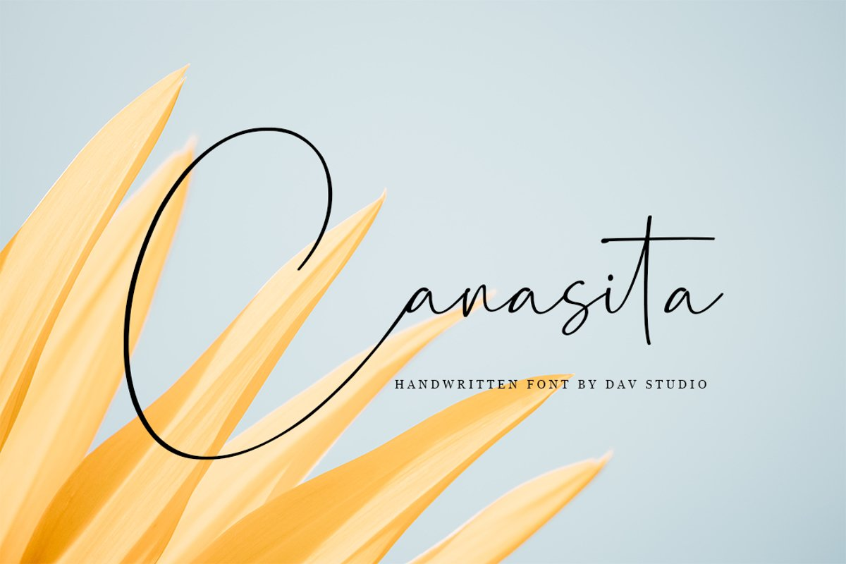 Canasita - Script Handwritten Font example image 1