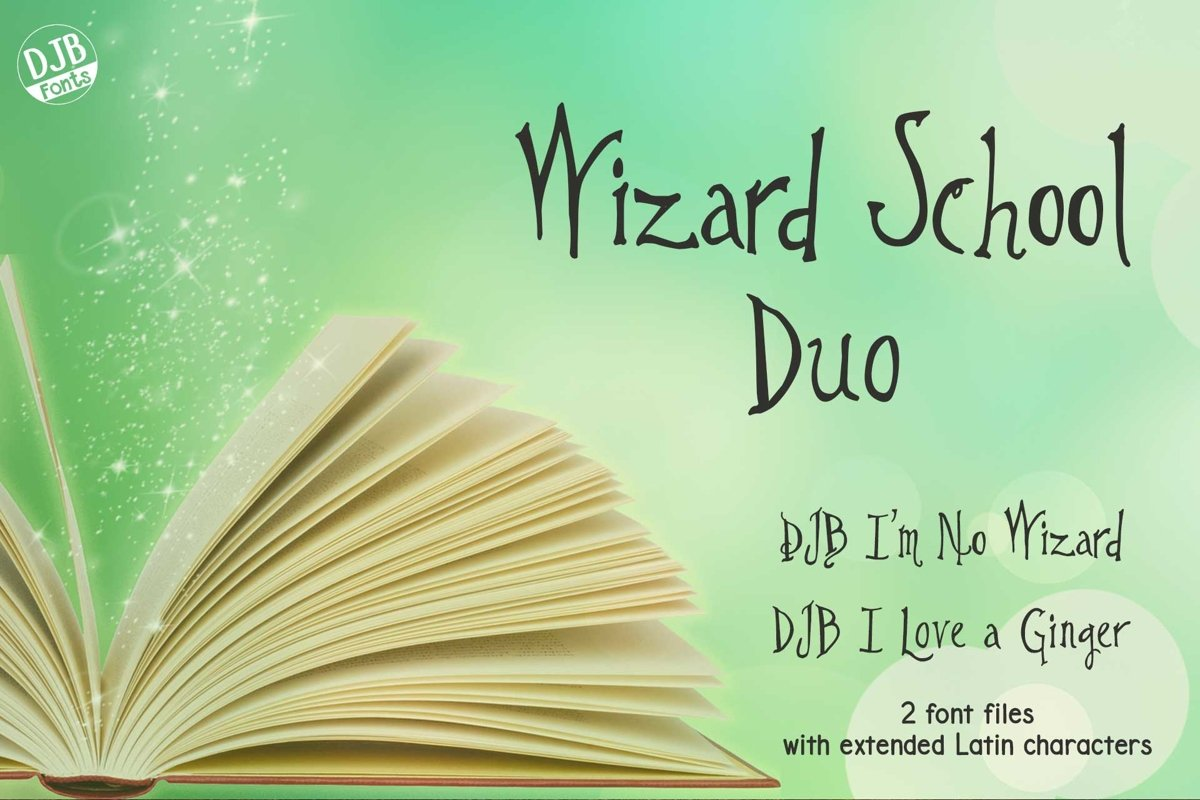 Wizard School Duo example image 1