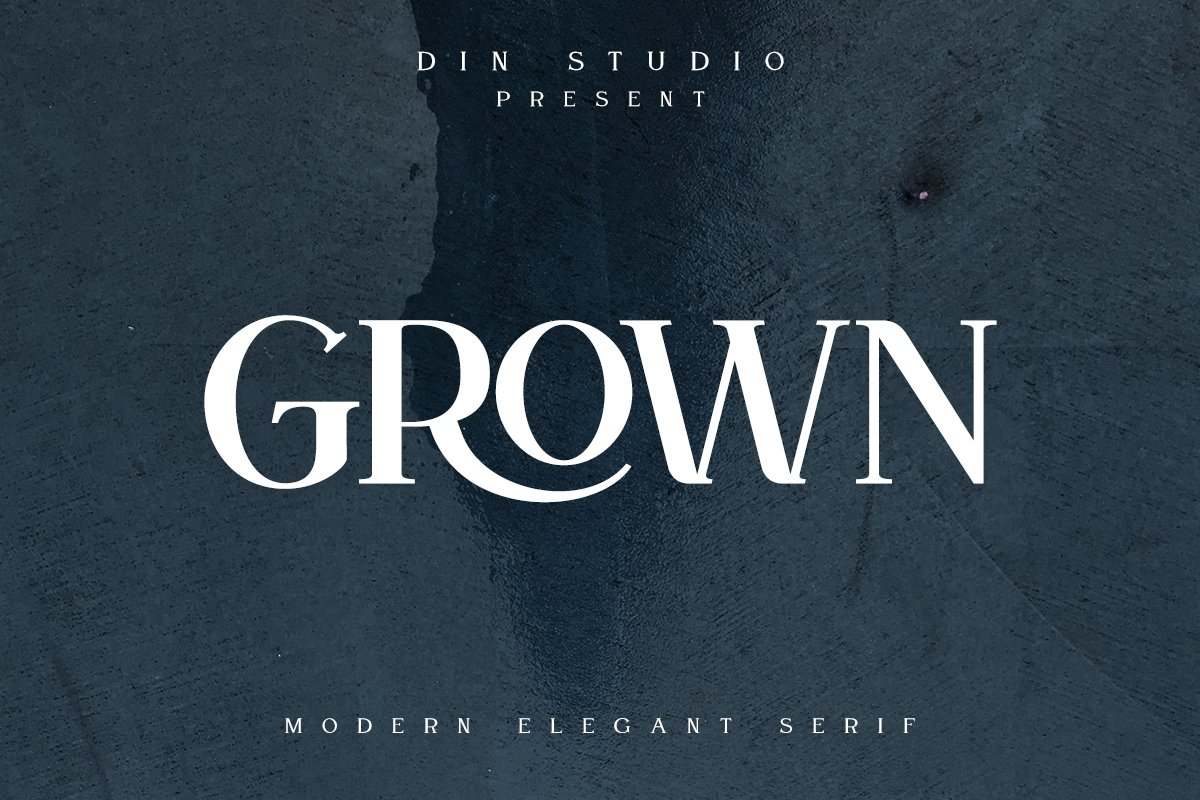 GROWN - Modern Serif example image 1
