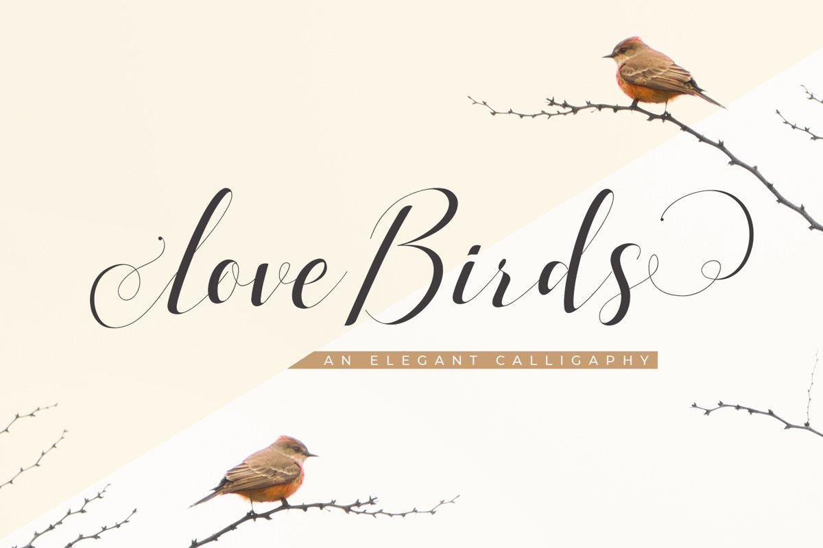 Love Birds example image 1