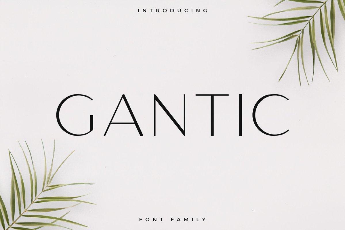 Gantic Font Family - Sans Serif example image 1