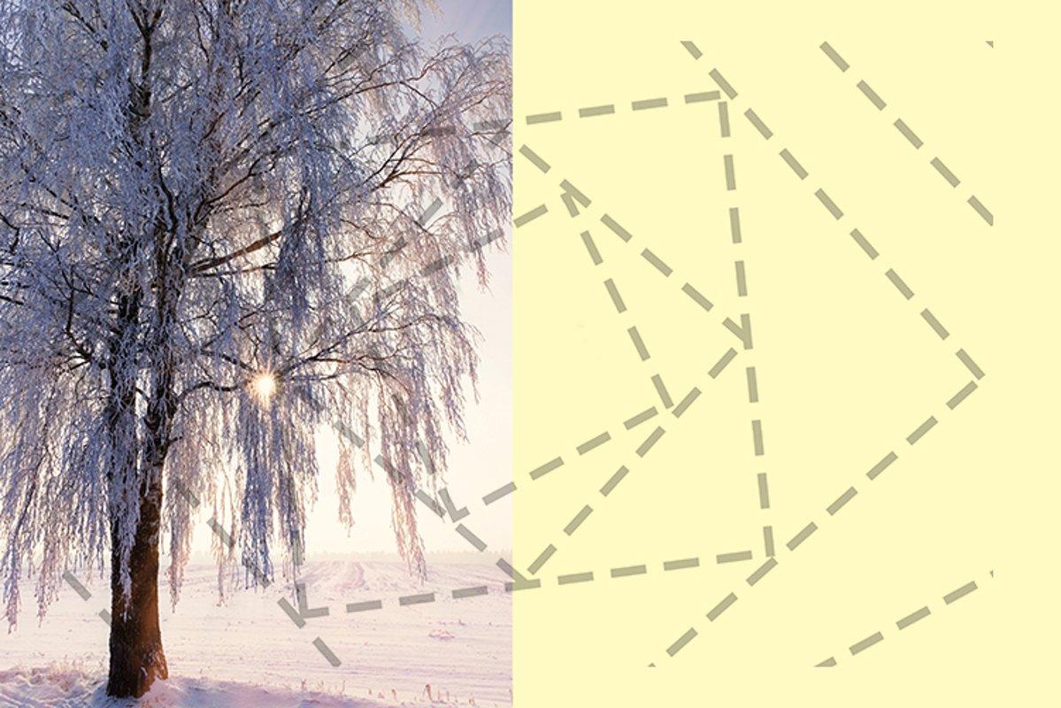 birch snow sunset example image 1