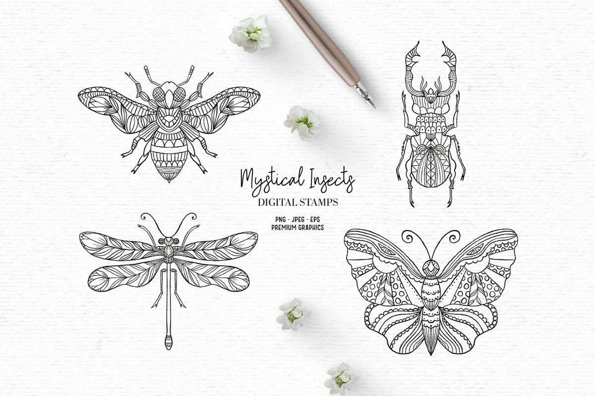 Hand drawn digital stamps with insects | Boho clipart example image 1