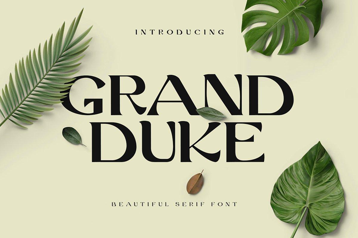 Grand Duke Beauty Serif Font example image 1