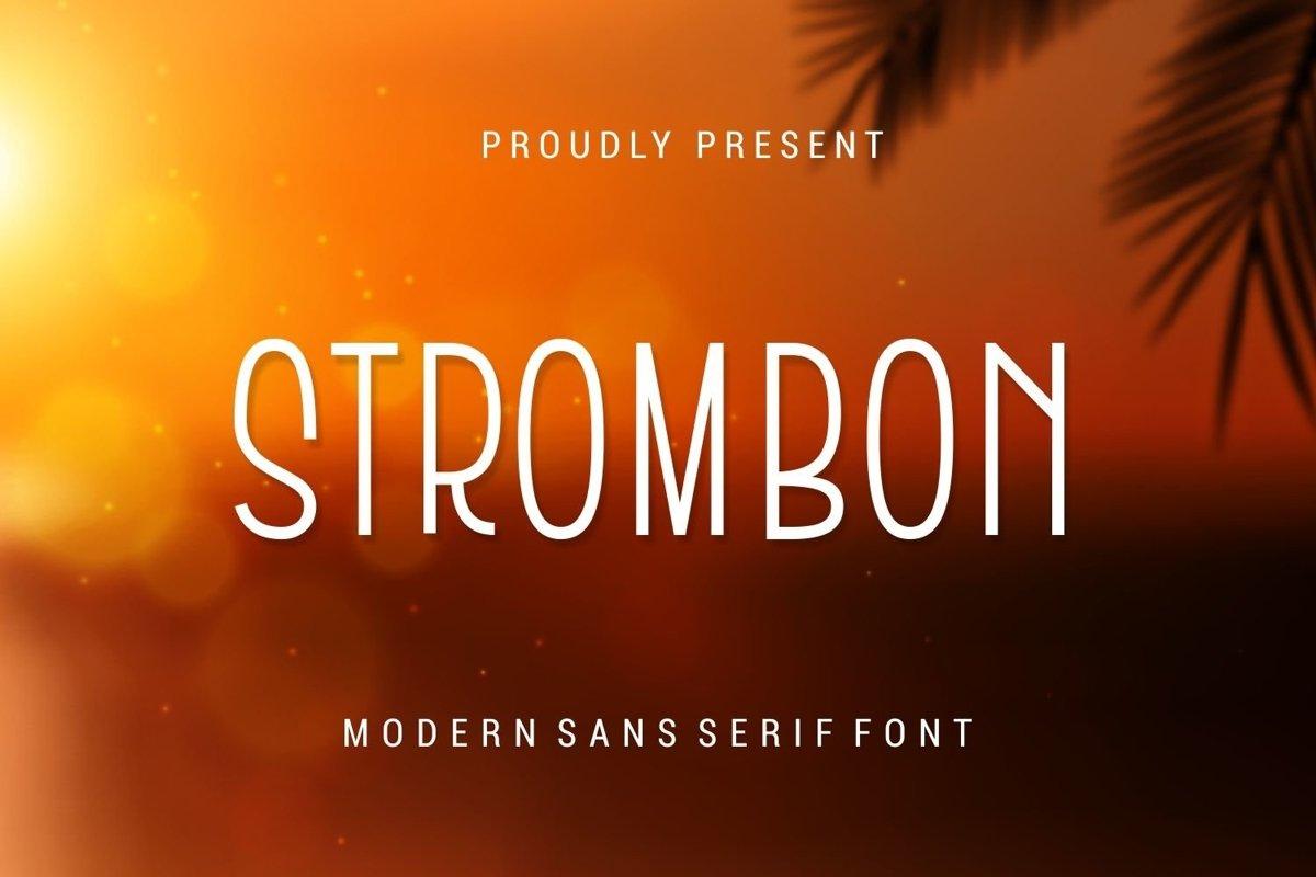 Web Font Strombon - Modern Sans Serif Font example image 1