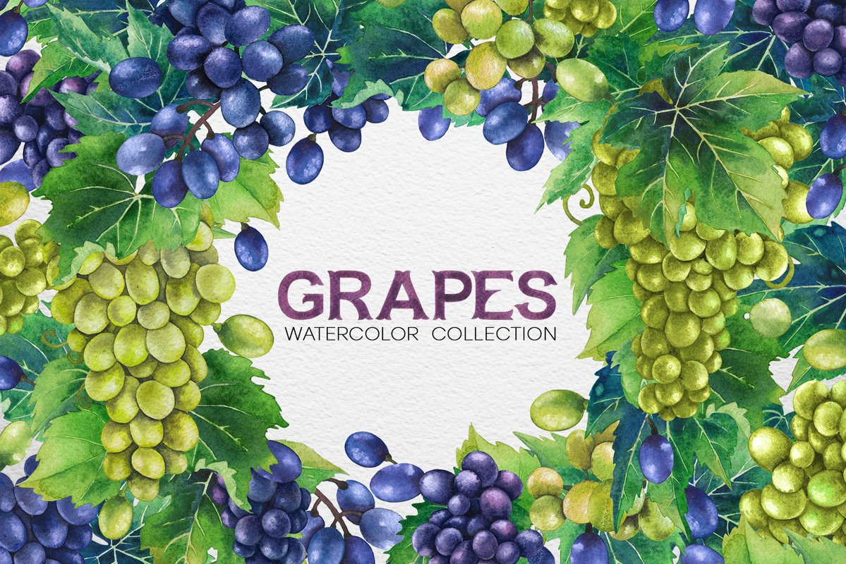 Watercolor Grapes example image 1