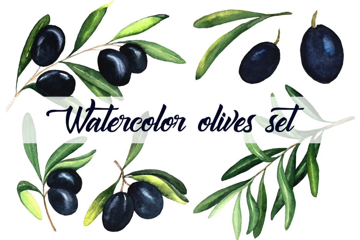 Watercolor olives set example image 1