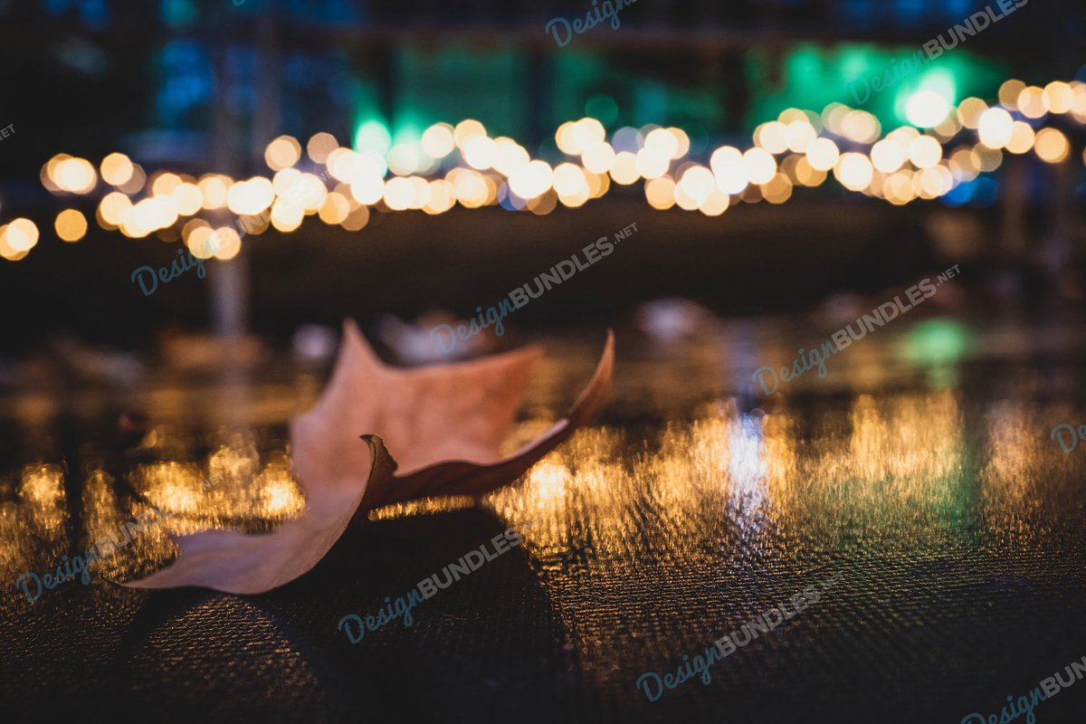 Stock Photo - Bokeh Fallen Leaves example image 1
