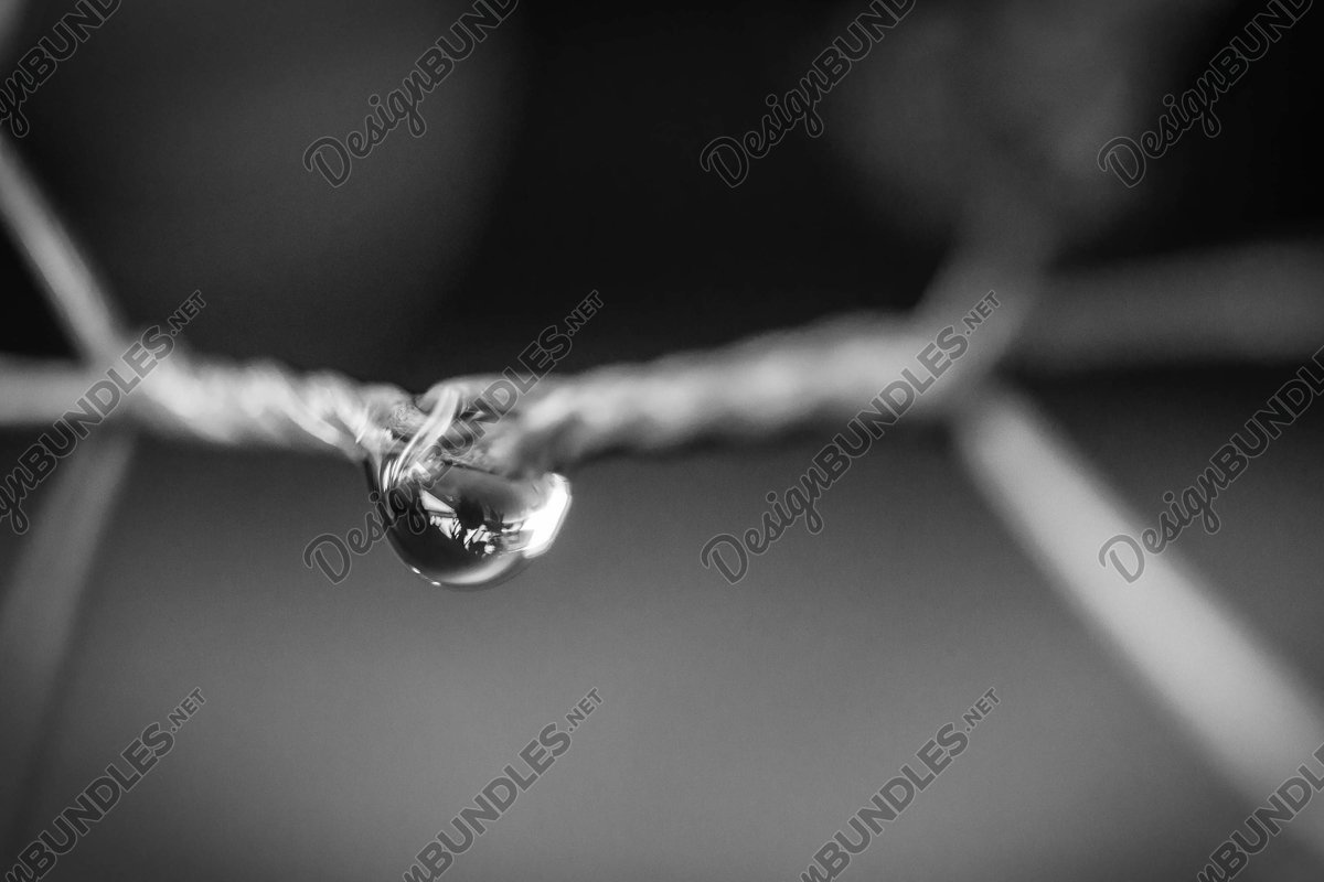 Stock Photo - Water droplets on a metal fencing example image 1