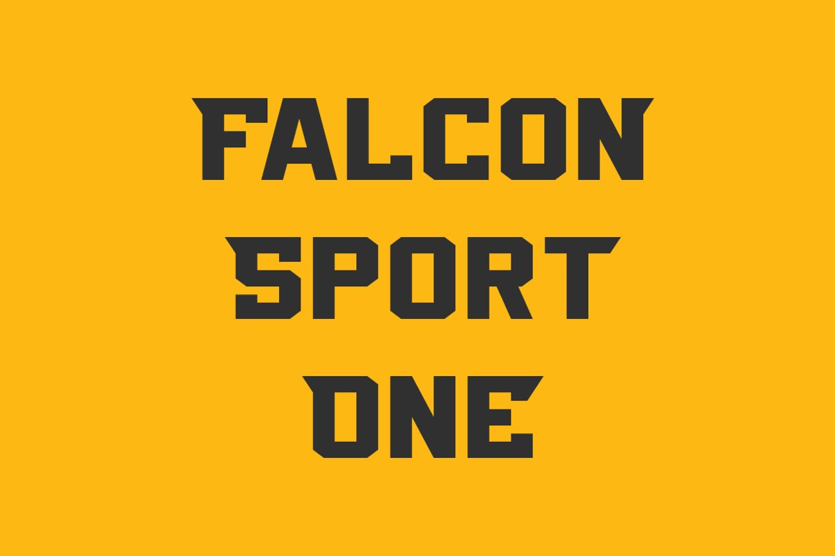 Falcon Sport One example image 1