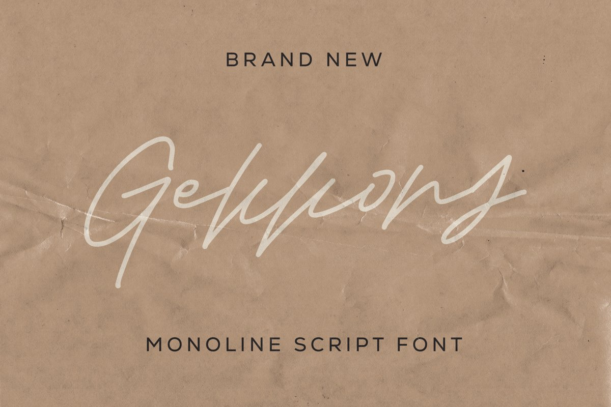 Gekkons - Monoline Script Font example image 1